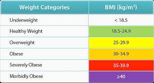 BMI-1 (1)